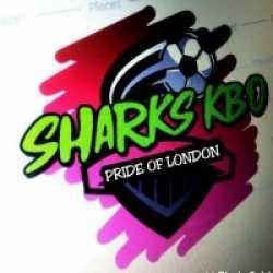 KBO Sharks